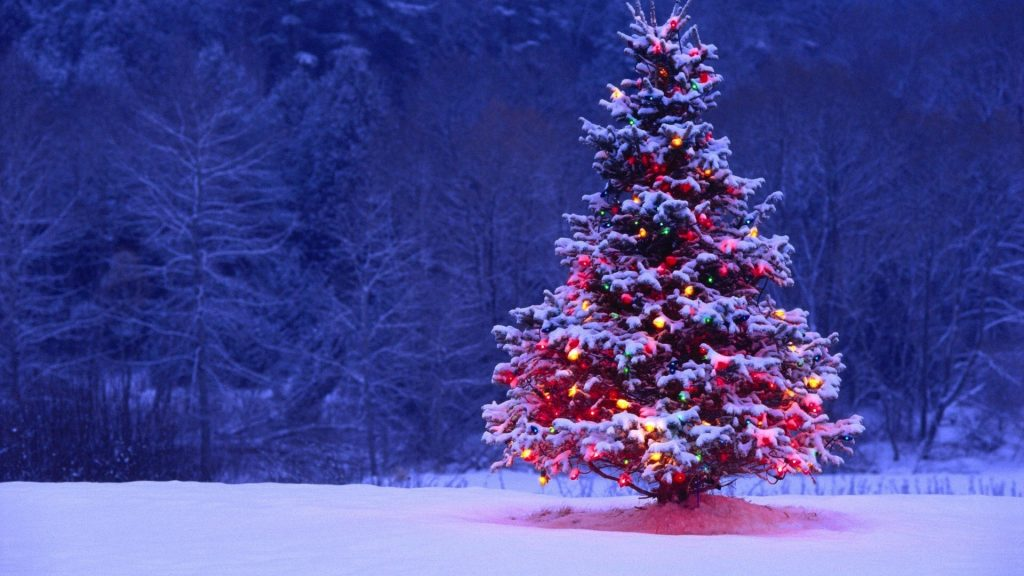 Happy Christmas Season!